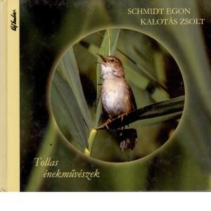madarak, természet, énekesmadarak